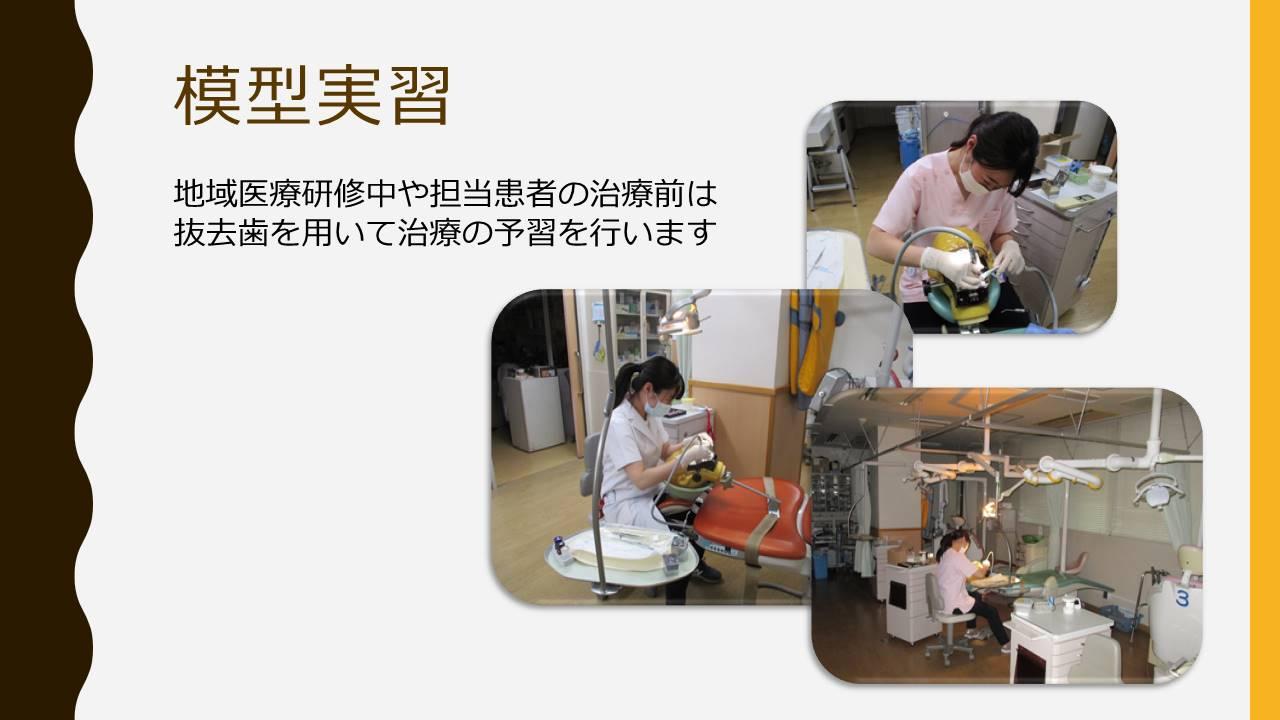 歯科臨床研修医内容7